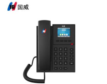 title='國威GW12P彩屏網絡/VOIP/SIP電話機'