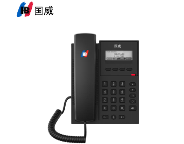 title='國威GW11/GW11P/VOIP 網絡電話機'